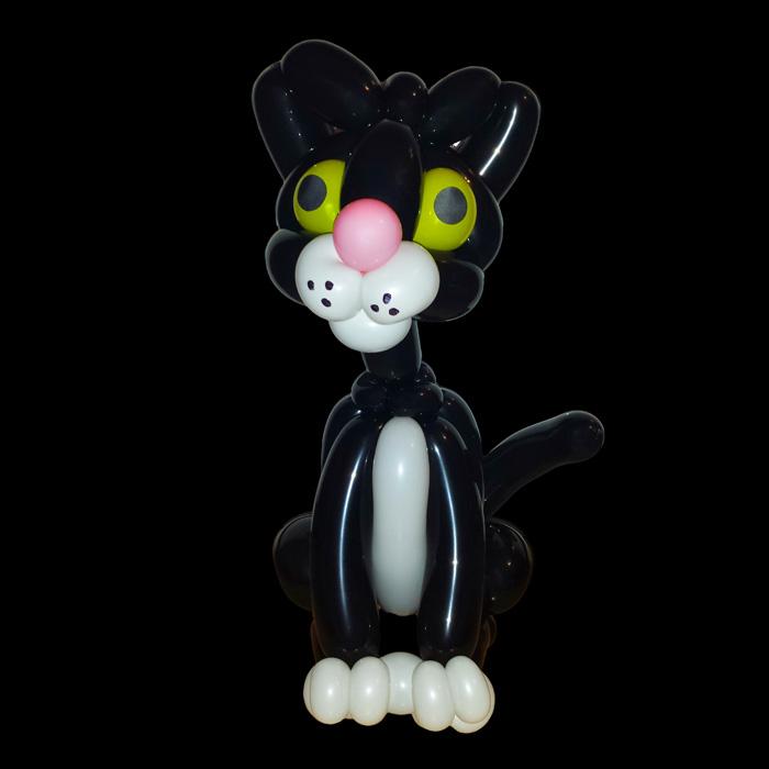 black cat balloon animal